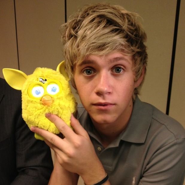 Niall Horan with a Furby