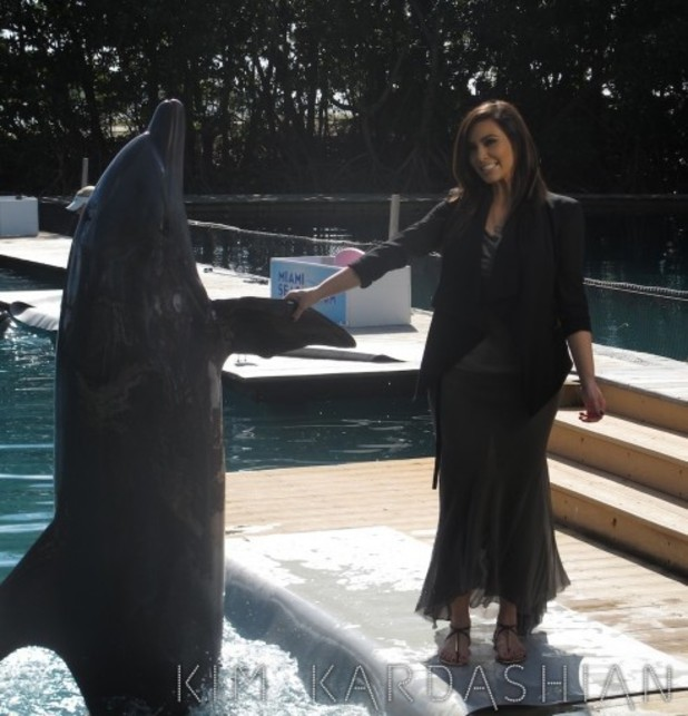Kim Kardashian touches the dolphin's fin