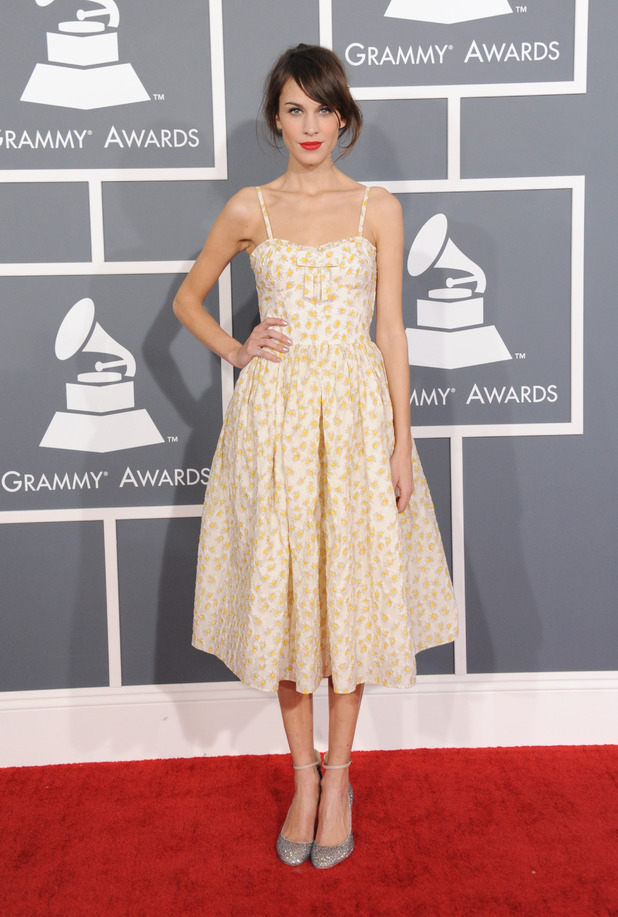 Grammy Awards 2013: Celebrities on the red carpet