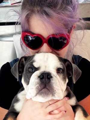 Kelly Osbourne poses with a bulldog - 7 June 2013