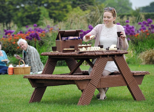 The chocolate picnic table
