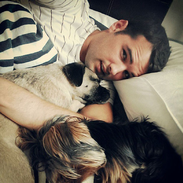 Ricky Rayment and Jessica Wright's dogs Blake and Bella, 25 July 2013