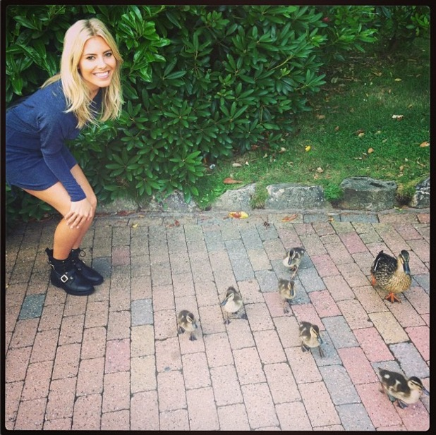 The Saturdays' Mollie King alongside a family of ducks - 1 August 2013