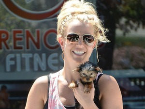 Britney Spears and her dog in LA, 30 August 2013