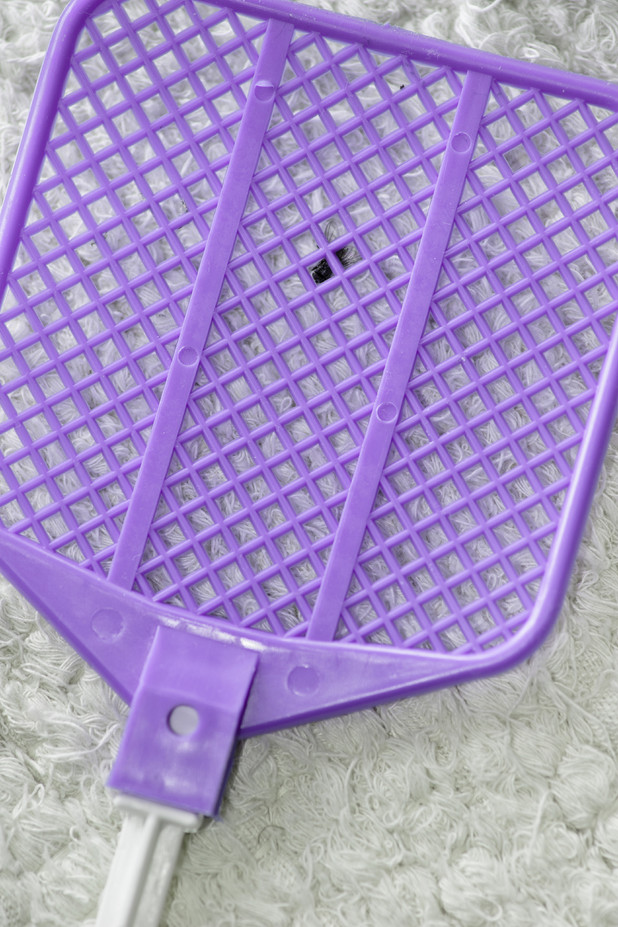 Fly swatter - Nicola Butcher, 33, was asked for ID when buying a fly swat like this one