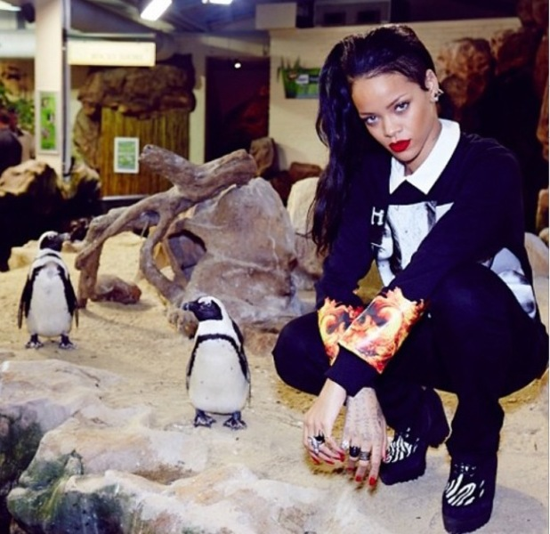 Rihanna pictured visiting the aquarium in Cape Town, South Africa