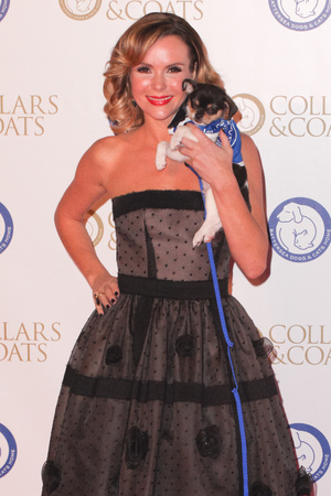 Collars & Coats Gala Ball, London, Britain - 07 Nov 2013 Amanda Holden