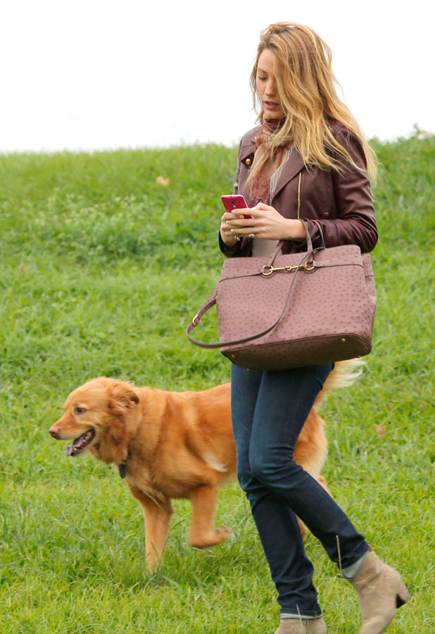 Blake Lively with dog Baxter at a park in LA. 5 Nov 2013
