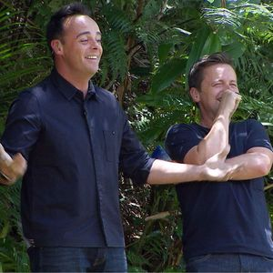 I'm A Celebrity Get Me Out Of Here' TV Programme, Australia - 03 Dec 2013 Ant and Dec watching Steve Davis fall into the lake before the trial begins - Bushtucker Trial 'Scares Rock'