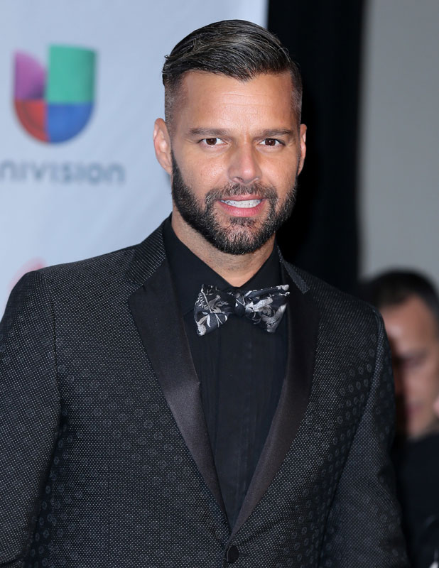 Ricky Martin  2013 Latin Grammy Awards Media Room Arrivals At Mandalay    Ricky Martin 2013 Boyfriend