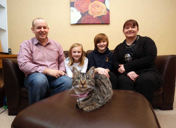 Cookie, Missing cat turns up 270 miles from home