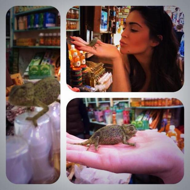 CBB's Casey Batchelor kisses lizard in Morocco - 5 March 2014