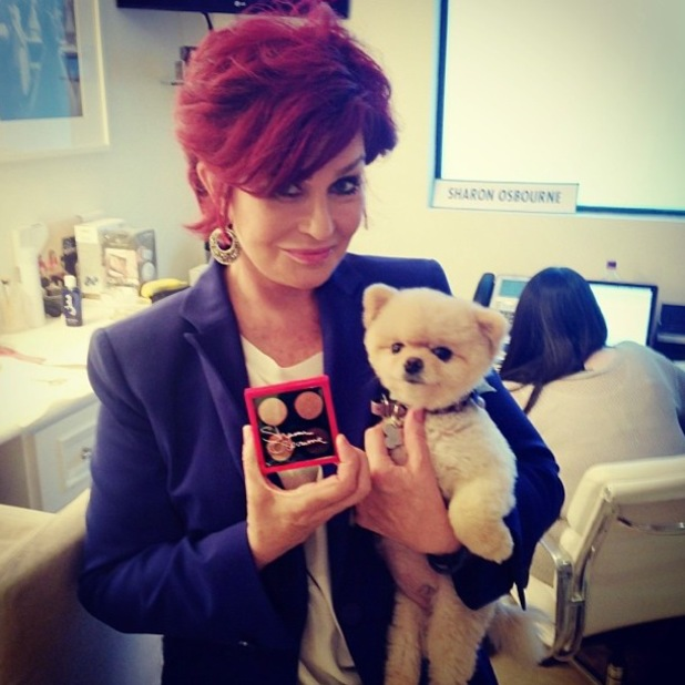 Sharon Osbourne Instagrams a sneak peek of her make-up collection for MAC Cosmetics - 2014