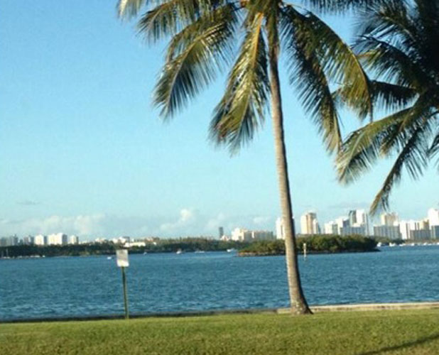 Lucy Mecklenburgh tweets picture of Miami skyline, 4 March 2014