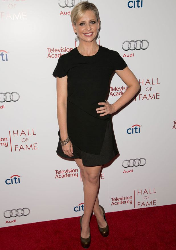 Sarah Michelle Gellar attends The Television Academy's 23rd Annual Hall of Fame event at The Beverly Wilshire Hotel in Beverly Hills, 11 March 2014