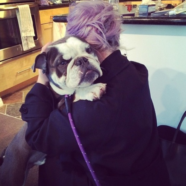 Kelly Osbourne cuddles dog Willy after he saves her life. (20 March).