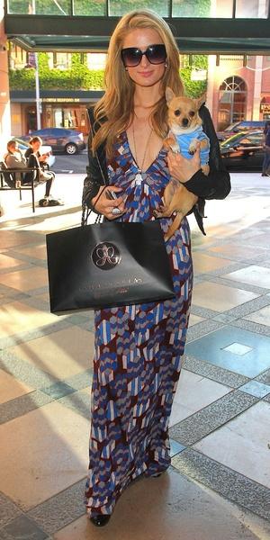 Paris Hilton walking along Bedford Drive carrying her pet chihuahua, 4 April 2014