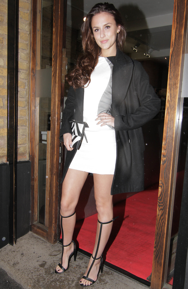Lucy Watson - The Company of Dogs Pet Portrait Exhibition -Outside Arrivals - 20 March 2014