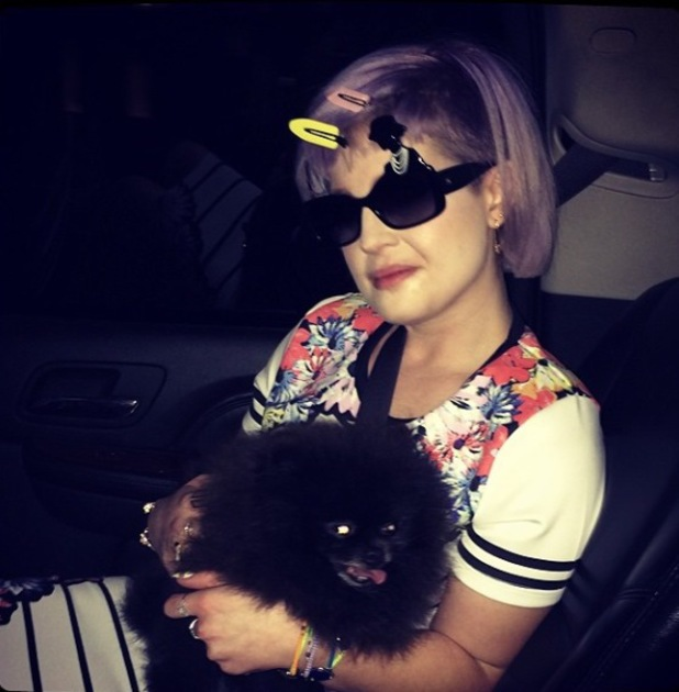 Kelly Osbourne cuddles dog Sid during nighttime photo shoot - 23 April 2014