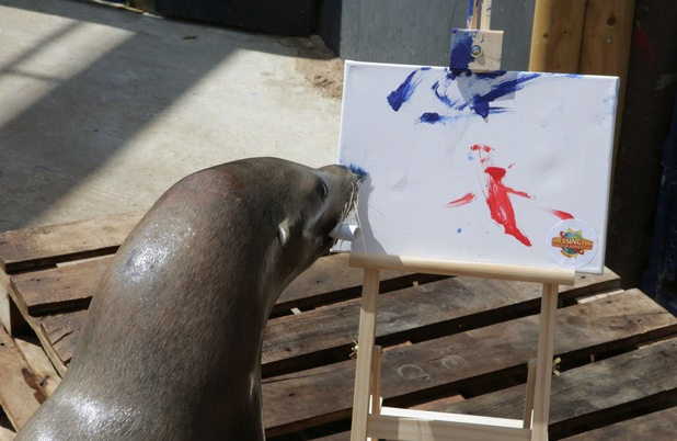 """Harley the seal painting """"Arf Attack"""""""