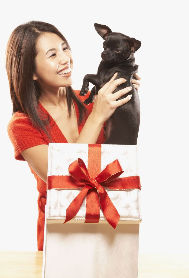 Woman with dog and gift box
