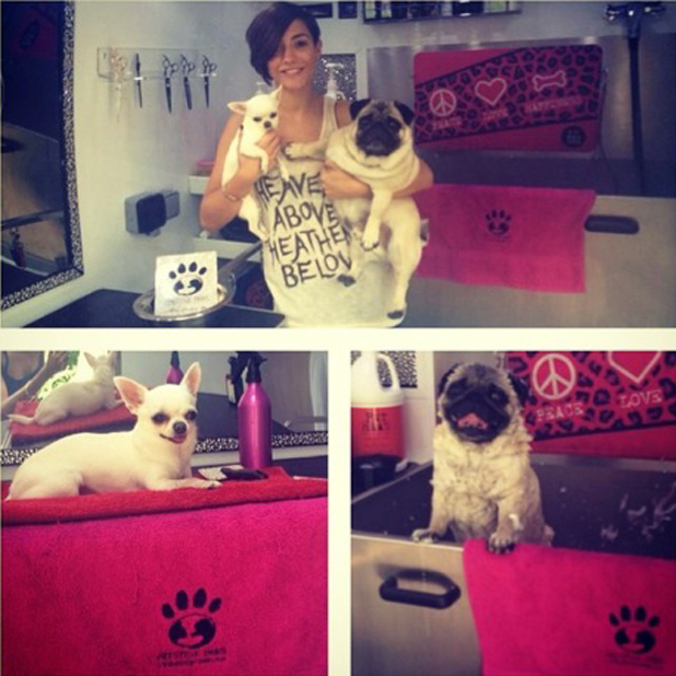 Frankie Sandford treats dogs to spa day out, 17 July 2014