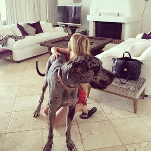 Ellie Goulding and Dog, Ibiza, Instagram 5 August