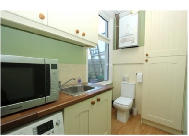 Kitchen with a toilet, taken from Terrible Estate Gaents