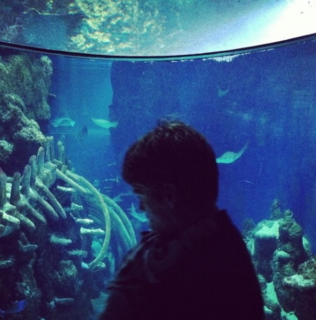 Jesse Wood and Rex Wood at aquarium, taken from Fearne Cotton's Instagram
