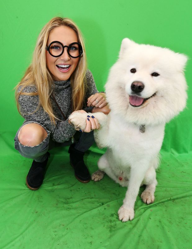 Stephanie Pratt pictured with pooches in Battersea Park, London, Britain on 5 Oct 2014 to launch the WABAC My Dog Tour to celebrate the DVD release of Mr Peabody and Sherman