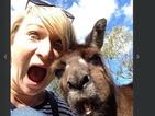 Lucky girl grabs hilarious selfie with a kangaroo!