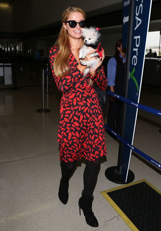 Paris Hilton and Prince Hilton The Pom arrive at Los Angeles International Airport, America - 21 October 2014