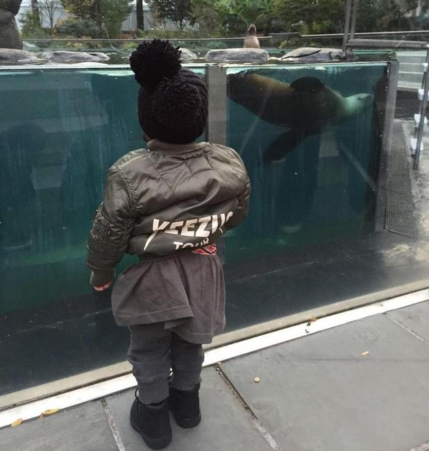 Kim Kardashian shares cute snaps of daughter North during family day out at the zoo, 14 November 2014