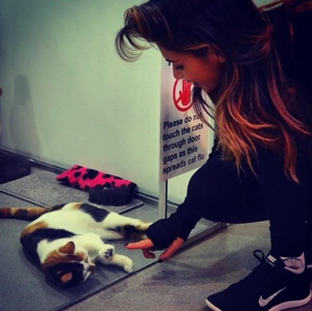 Nicole Scherzinger visits Battersea Cats Home, London 21 November