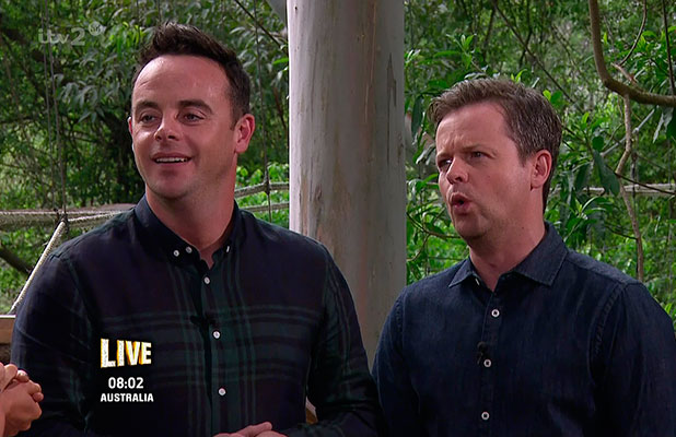 I'm A Celebrity Get Me Out Of Here NOW! Ant & Dec appear on episode, 19 November 2014