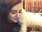 Demi Lovato treats herself to the cutest puppy ever for Christmas!