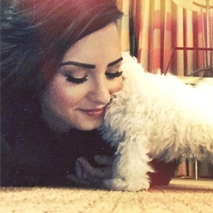 Demi Lovato and her new puppy 19 December