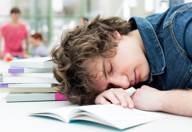 Student napping in library