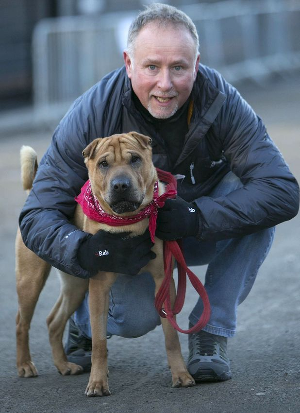 Kai, the dog abandoned at train station, get a new owner.