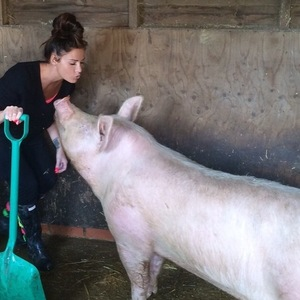 Katie Price shares instagram photo of her pig 19th April 2015