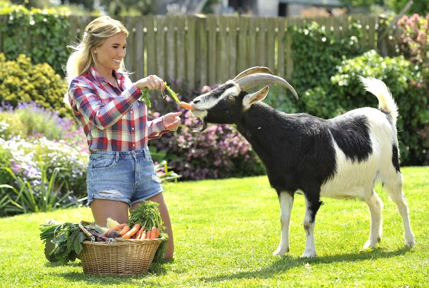 Billie Faiers goes from glam to farmyard helper in a new photo shoot for Kellogg's Origins campaign - 10 June 2015.