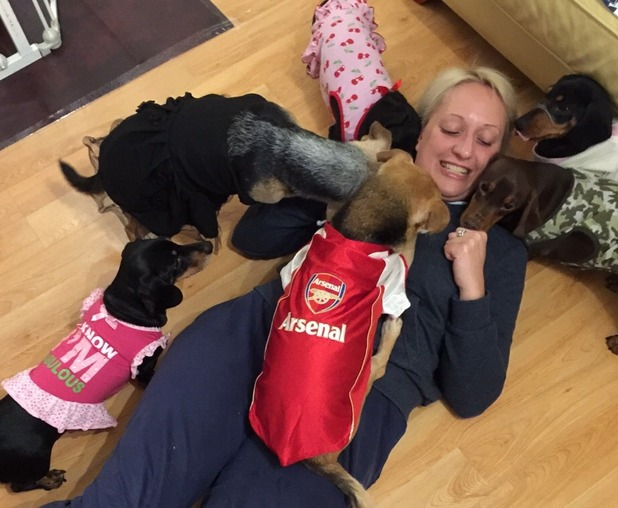 Ewa Kasyan and her six pampered dogs