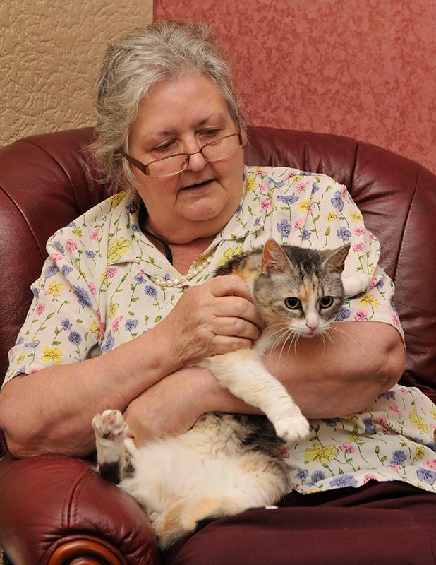 Cat saves fallen woman's life by alerting paper boy, Kirkcaldy, Scotland - 08 Jul 2015