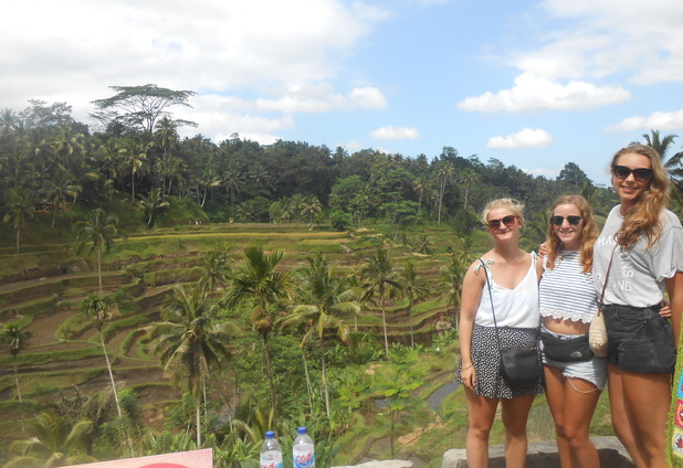 Tegalang Rice Terraces, Ubud, 12/8/15