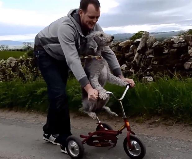 Wayne Sowerby teaching Barry how to steer