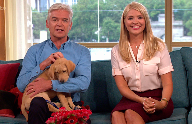 'This Morning' TV Programme, London, Britain - 01 Sep 2015 Puppy