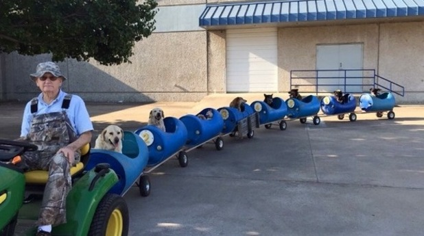 Eugene Bostick built a nine-seater train for his dogs