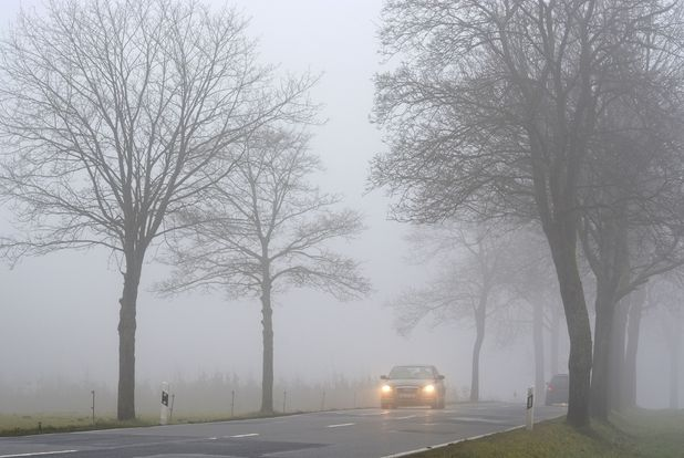 Sheila Fitzgerald got lost in the fog for eight hours and drove 50 miles away from her home