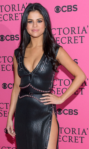 Selena Gomez on the pink carpet at the Victoria's Secret Fashion Show in New York, 11th November 2015