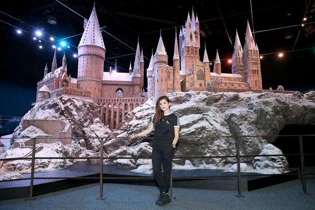Parisa Tarjomani  at Hogwarts in the Snow at Warner Bros. Studio Tour London – The Making of Harry Potter. 12 November 2015.